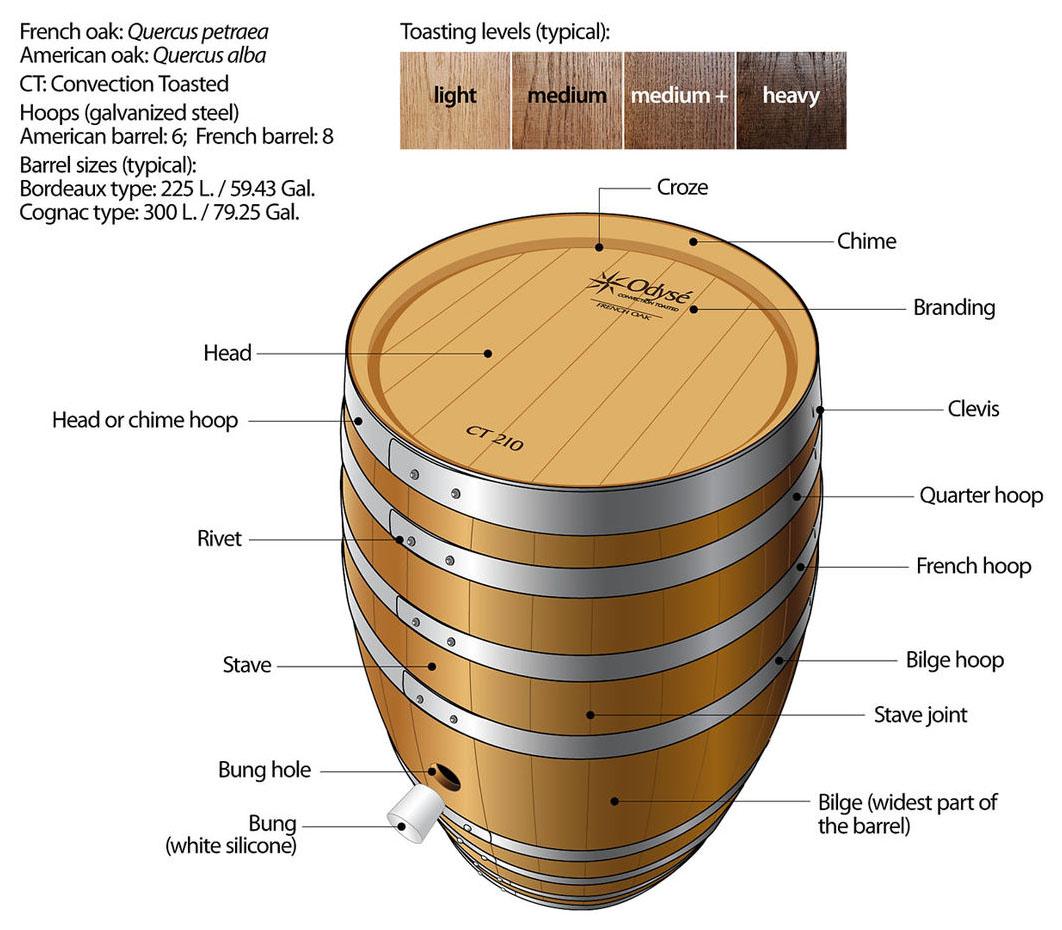 Cấu tạo thùng rượu gỗ sồi