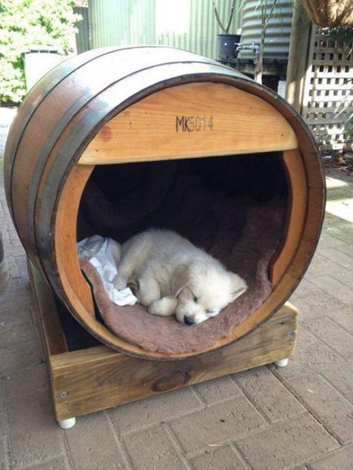 thùng rượu gỗ sồi Pháp làm nhà cho cún