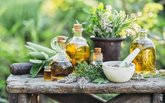 Các loại tinh dầu cho liệu pháp mùi hương